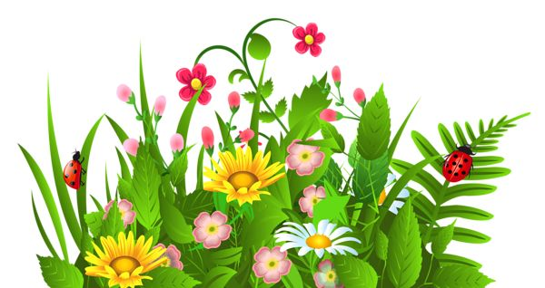 Cute Grass and Flowers PNG Clipart.
