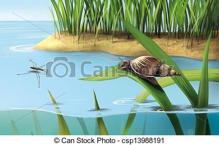 Stock Illustration of River scene: snail on grass, lake water.