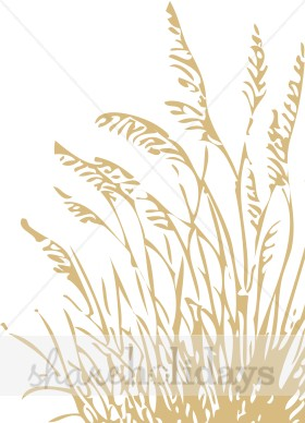 Stalk of grass clipart.