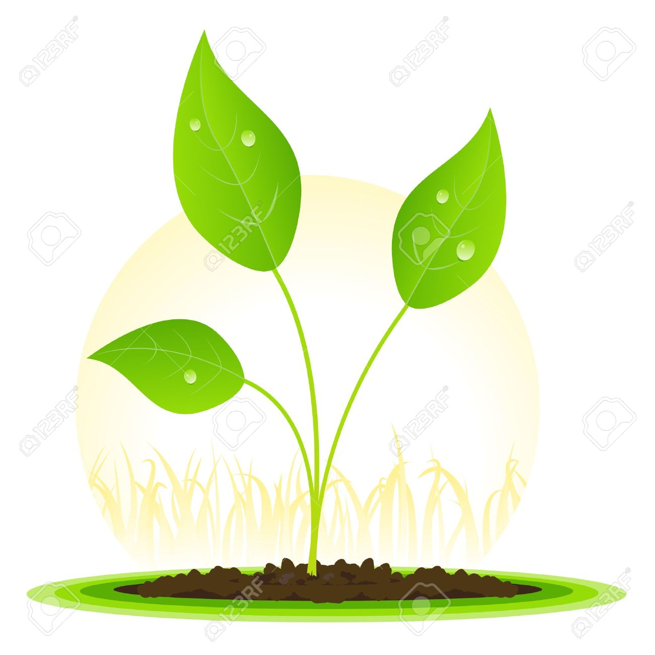 Leaves grow clipart #7
