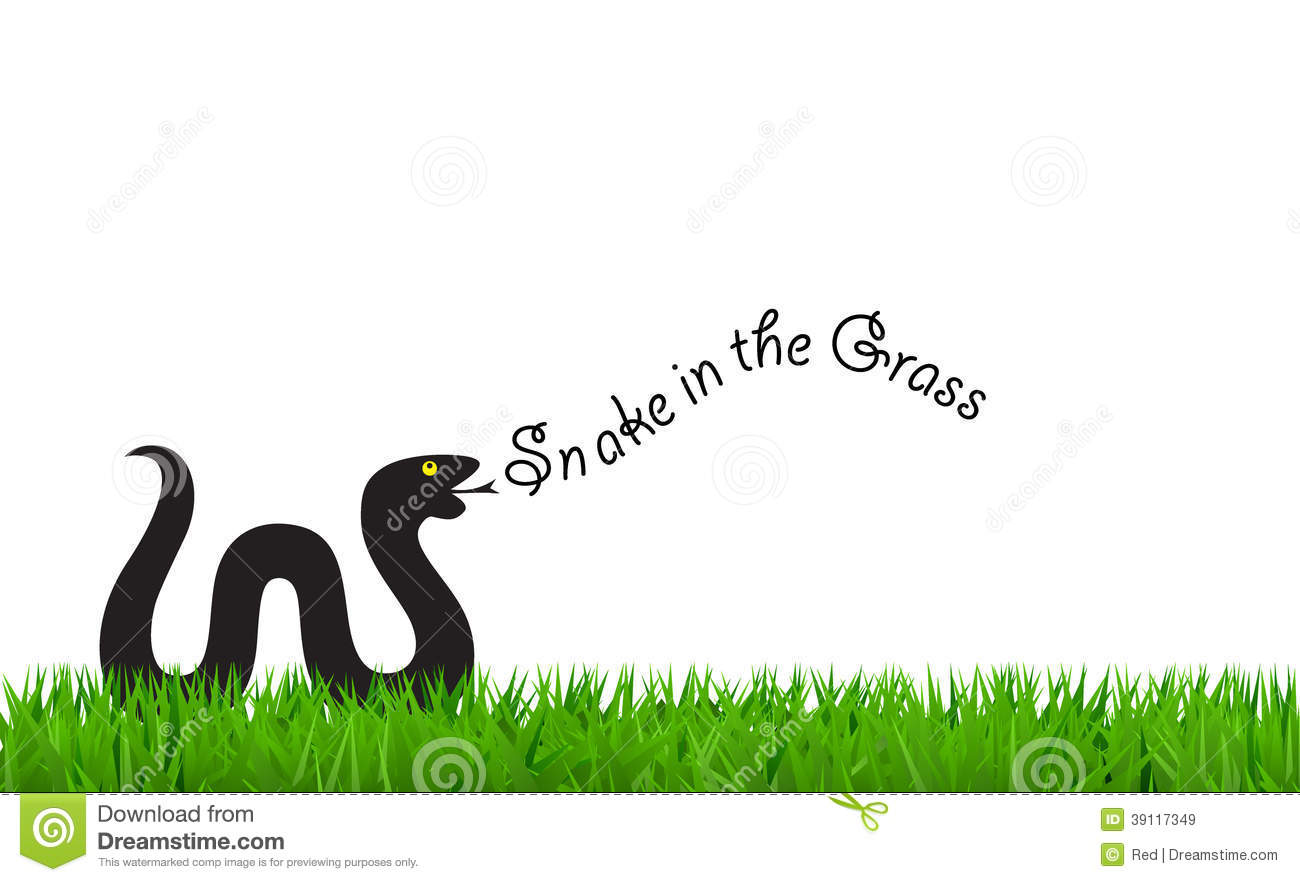 Snake in the grass clipart.