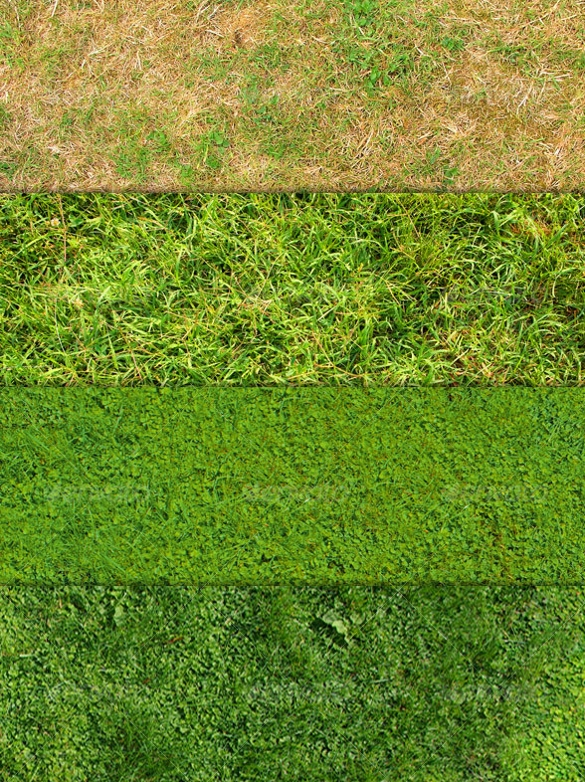 Grass Textures.