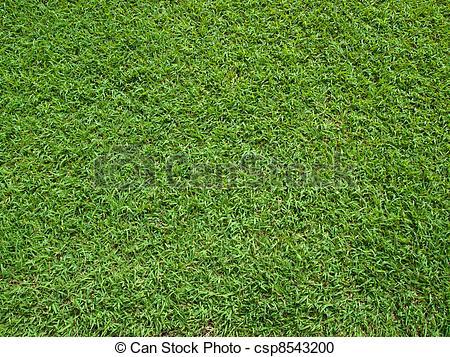 Grass Clipart Top View.