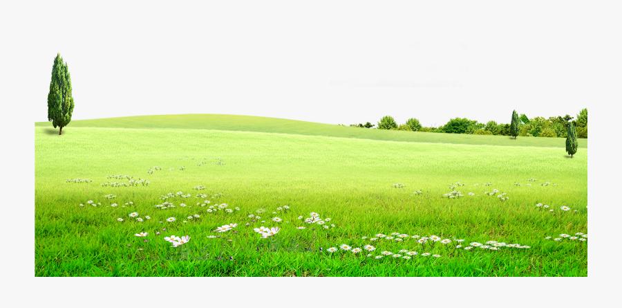 Transparent Grasslands Clipart.
