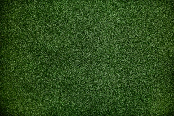 Green grass wallpaper with design space.