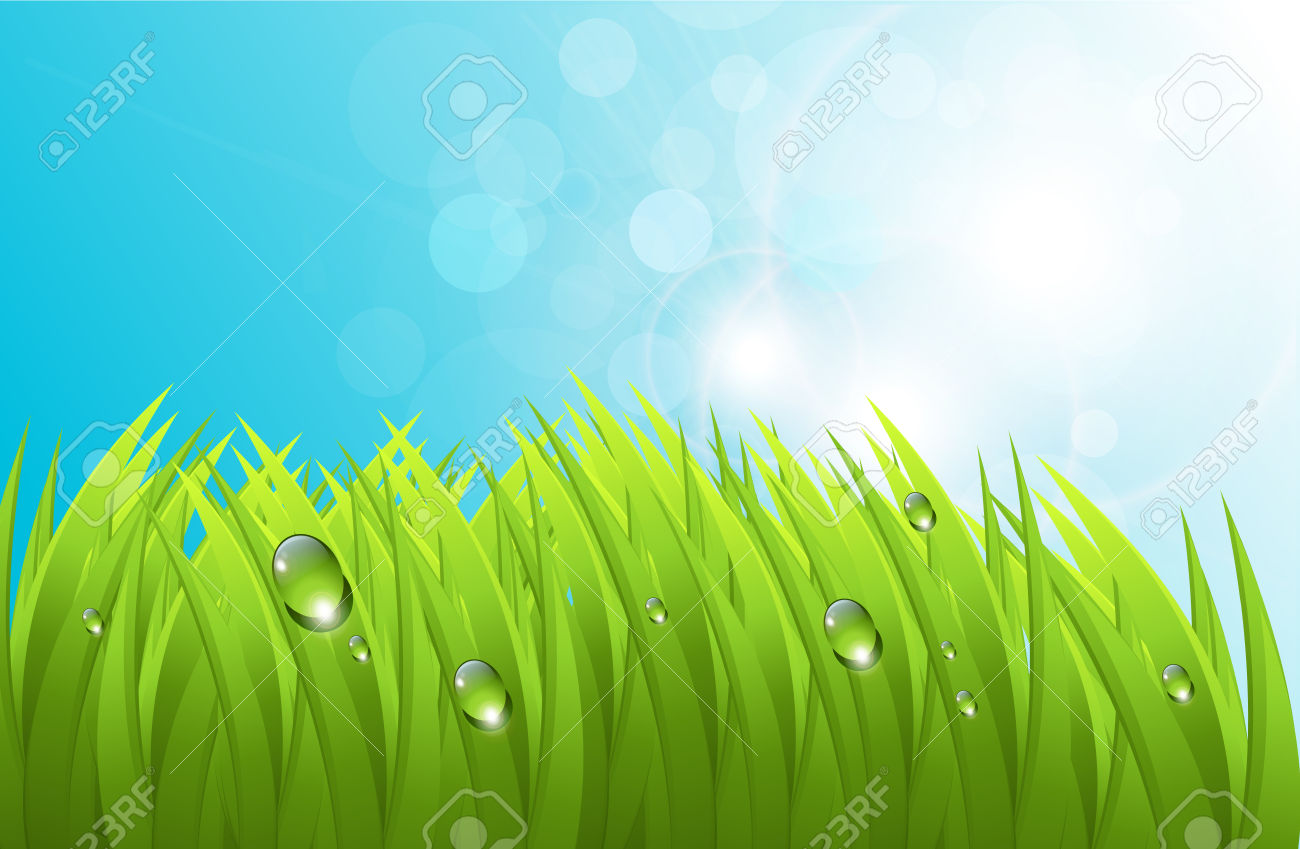 Realistic Grass With Dew, And Blue Sky, Fresh Spring Background.