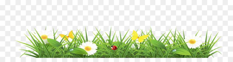 Spring Flower clipart.