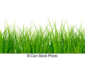 Grass Clipart and Stock Illustrations. 156,014 Grass vector EPS.