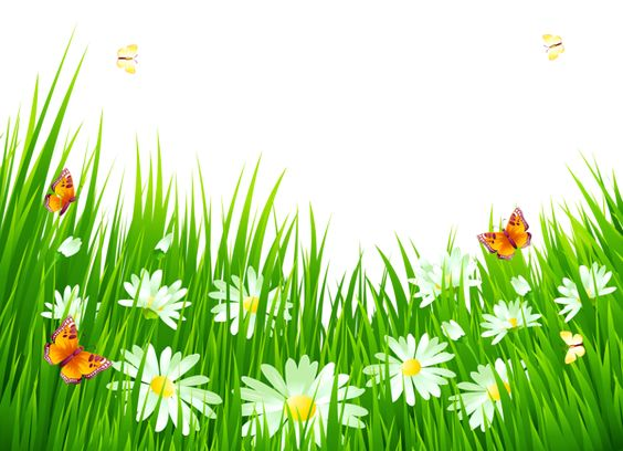 Grass with White Flowers PNG Clipart.