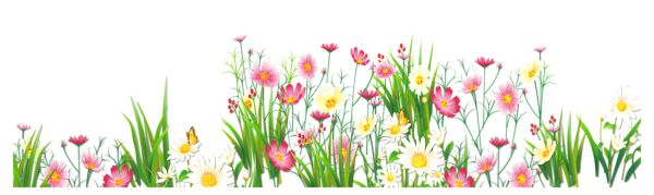 Flowers and Grass PNG Picture Clipart.