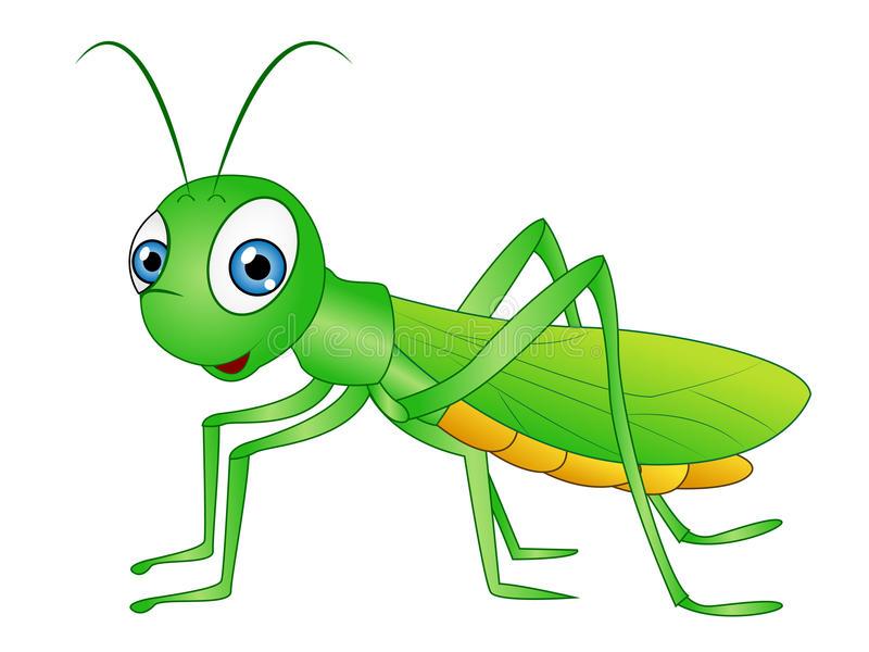 Grasshopper clipart 6 » Clipart Station.