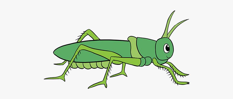 Grasshopper Clipart Easy.