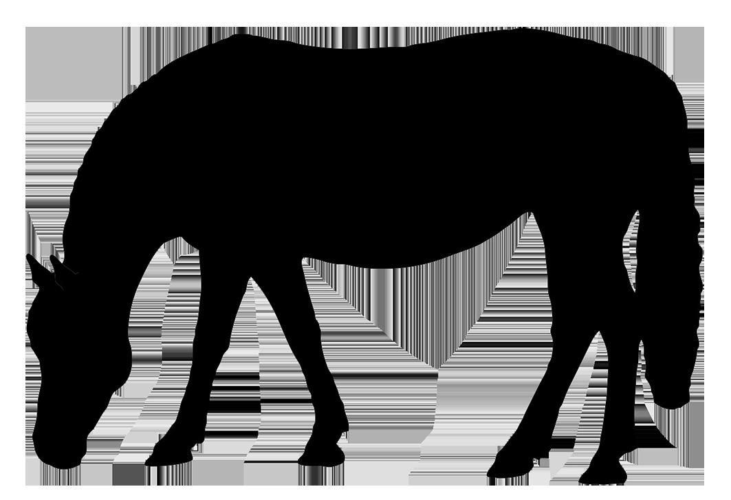 Horse grazing clipart.
