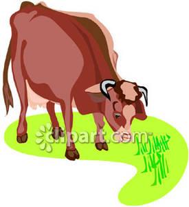 Cows Grazing Clip Art.