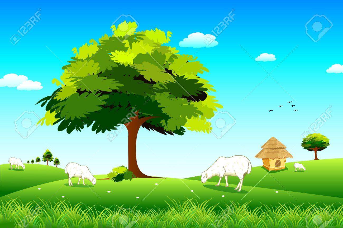 Grassland clipart background.
