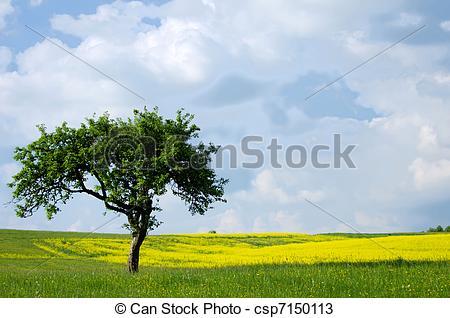 Grasslands Clipart Clipground