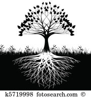 Grass roots Clipart Royalty Free. 1,547 grass roots clip art.
