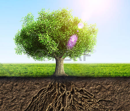 2,684 Grass Roots Stock Vector Illustration And Royalty Free Grass.