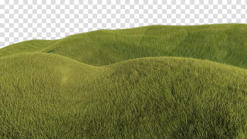 Grassy Hills, green grass field transparent background PNG.
