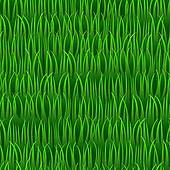 Grass clipart background 3 » Clipart Station.