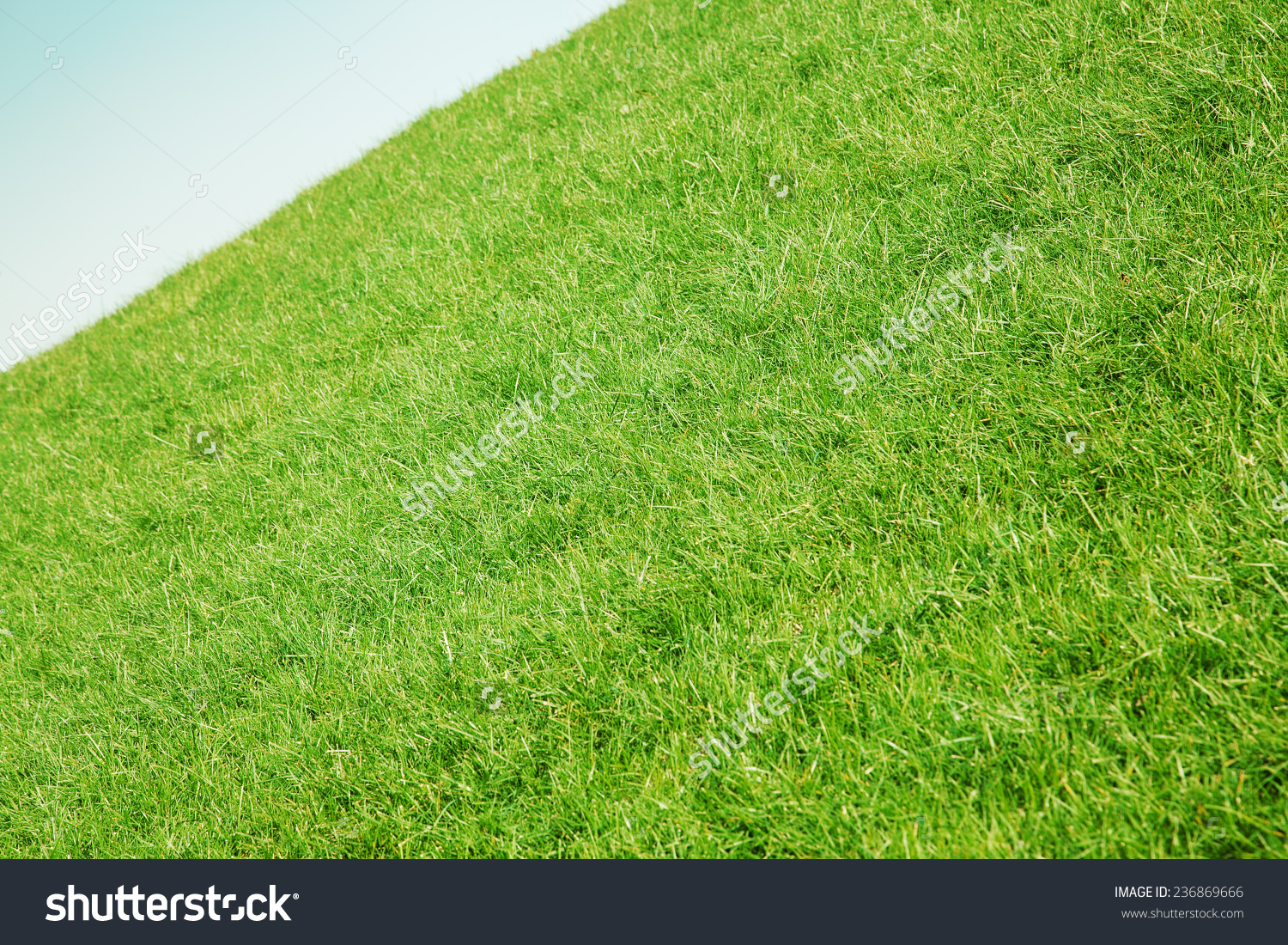 Inclined Slope Green Grass Blue Sky Stock Photo 236869666.
