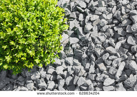 Gravel Bed Stock Images, Royalty.