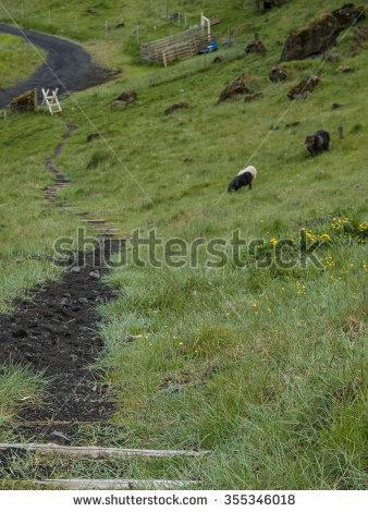 Icelandic Farmland Stock Photos, Images, & Pictures.