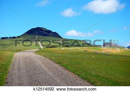 Stock Photo of Gravel road rural area New Zealand k12514592.