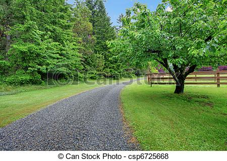 Pictures of Apple garden and gravel road.