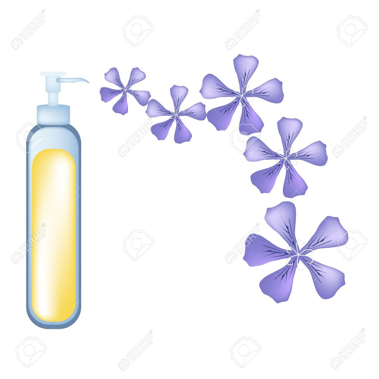 Beautiful Flower, Illustration Of Beautiful Violet Rose Geranium.