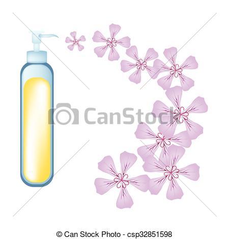 EPS Vectors of Essential oil and Rose Geraniumor Pelargonium.