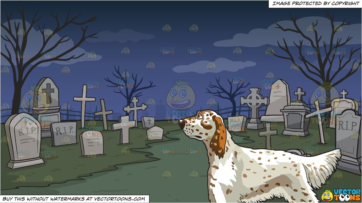 An Attentive English Setter and A Graveyard Background.