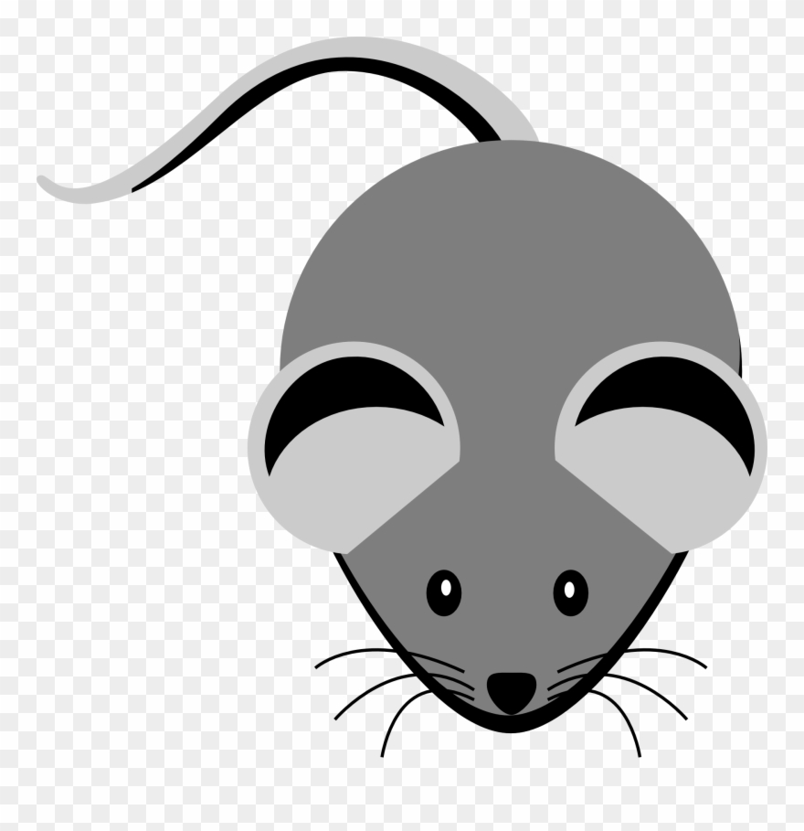 Rat Clipart Gray Mouse.