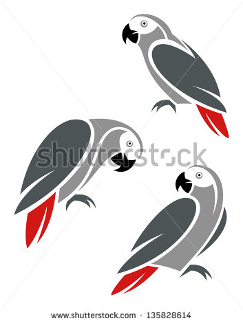 African Grey Parrot Stock Images, Royalty.