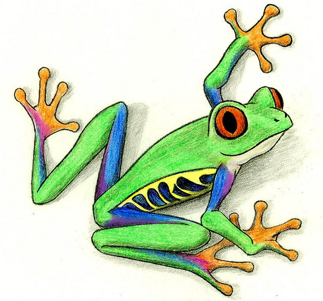1000+ ideas about Tree Frog Tattoos on Pinterest.
