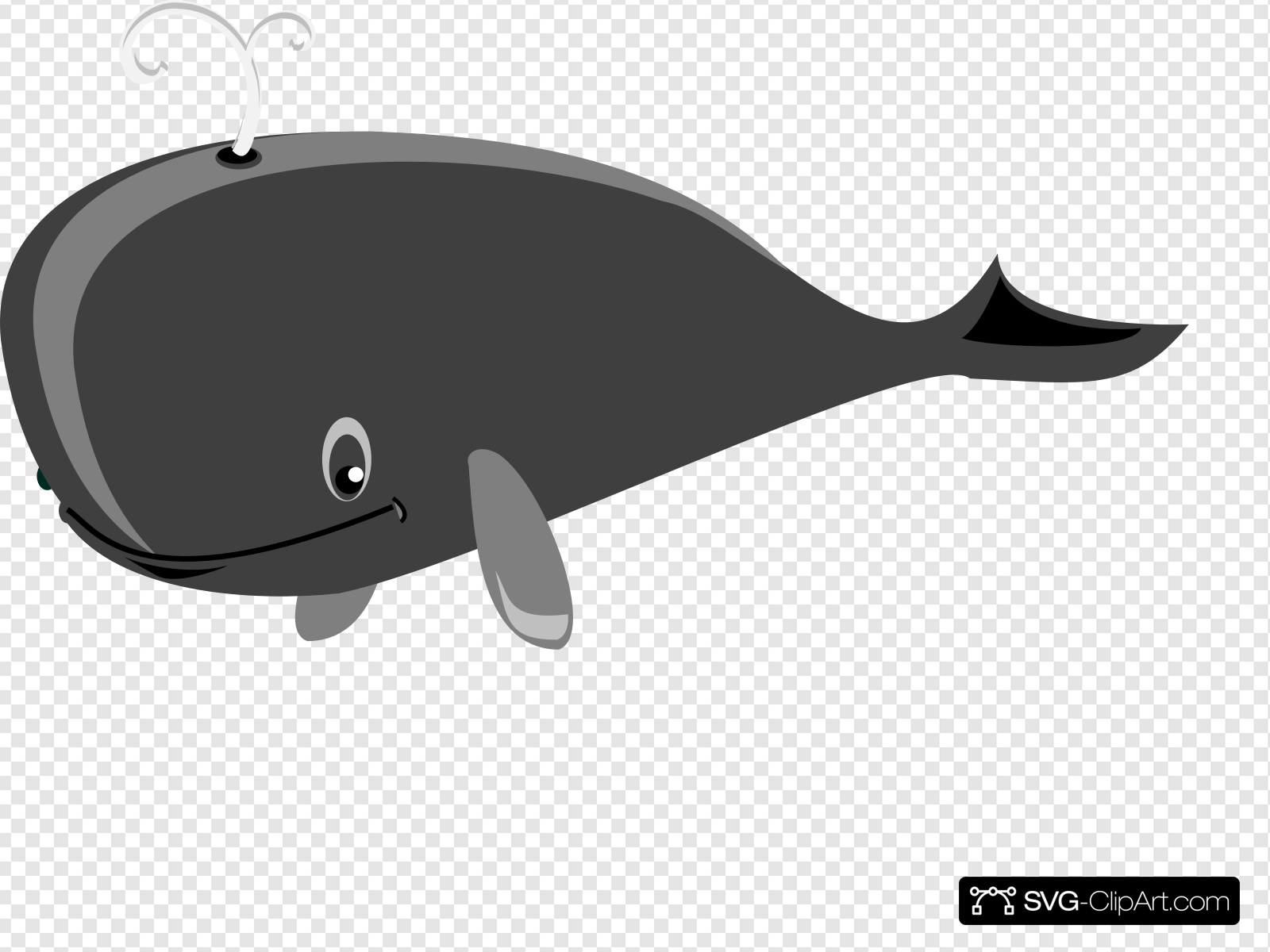 Gray Whale Grey Clip art, Icon and SVG.