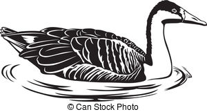 Graylag Clipart and Stock Illustrations. 4 Graylag vector EPS.