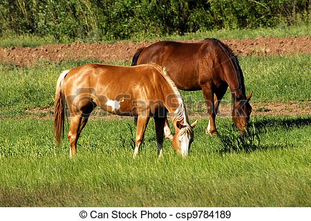 Grazing horses clipart.