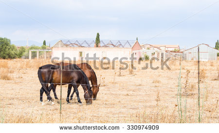 Agricultural Sector Stock Photos, Images, & Pictures.