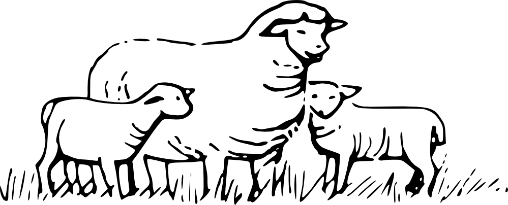 Sheep grazing clipart black and white.