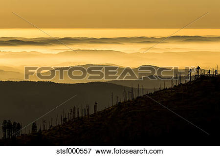 Picture of Germany, Bavaria, Bavarian Forest National Park, View.