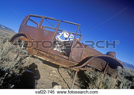 Stock Image of A deserted car with a cow skeleton driving in the.