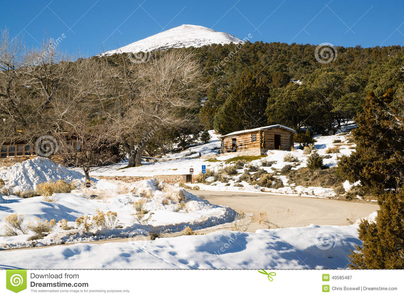 Historic Cabin Winter Day Great Basin National Park Southwest US.