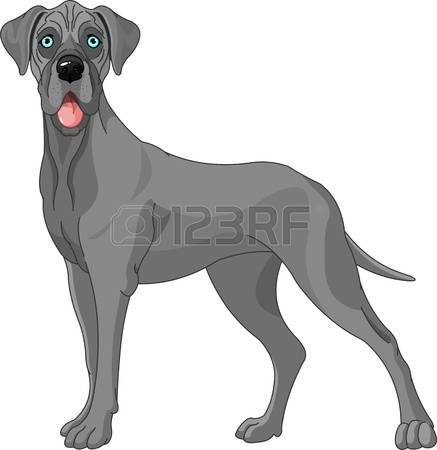 533 Great Dane Stock Illustrations, Cliparts And Royalty Free.