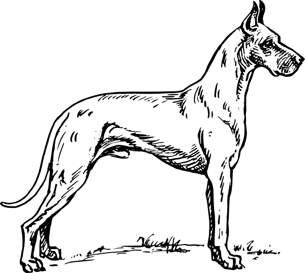 Great dane clip art.