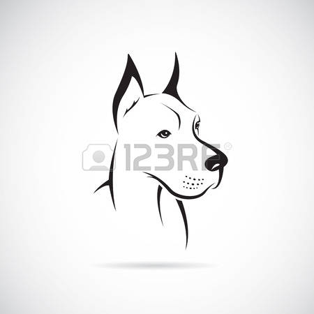 570 Great Dane Stock Illustrations, Cliparts And Royalty Free.