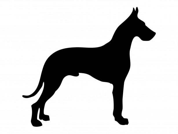 Free Great Dane Head Silhouette, Download Free Clip Art.