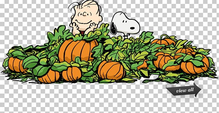 Snoopy Great Pumpkin Charlie Brown Peanuts PNG, Clipart.