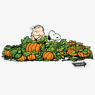 PNG The Great Pumpkin Cliparts & Cartoons Free Download.