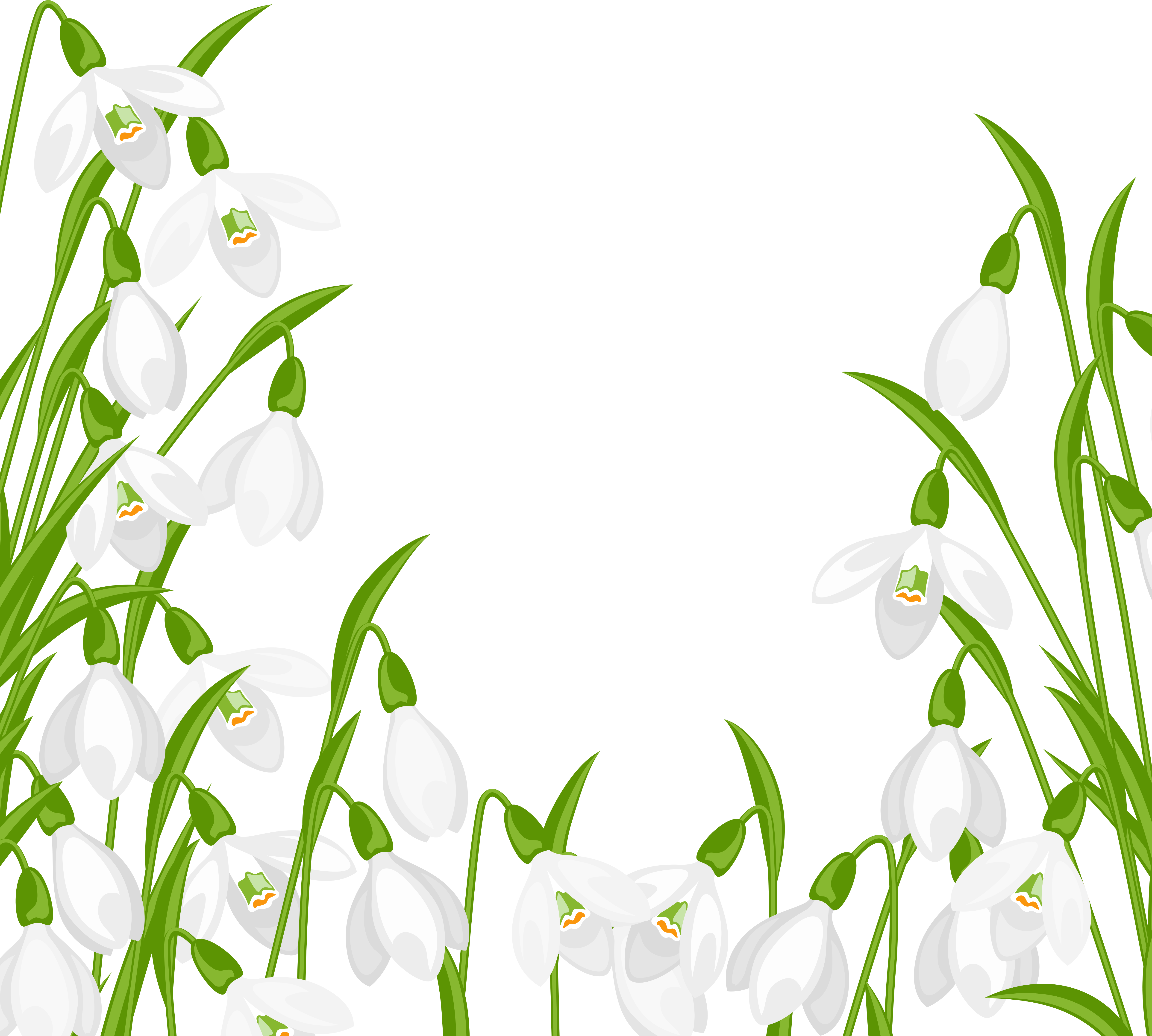 Snowdrops Decoration PNG Clipart.